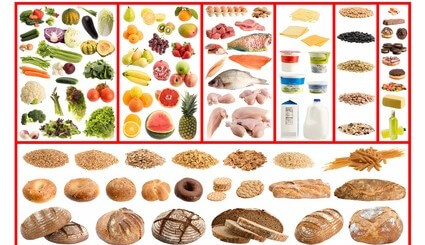 DGE-Ernährungskreis - Gesunde & ausgewogene Ernährung