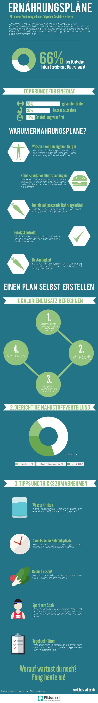 Ernährungsplan erstellen - Tipps (Infografik)