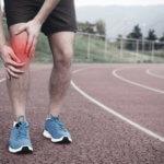 Hilfe bei schmerzenden Gelenken Gruenlippmuschelextrakt für Sportler