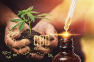 CBD Oel Wirkung gegen Schmerzen und psychische Krankheiten